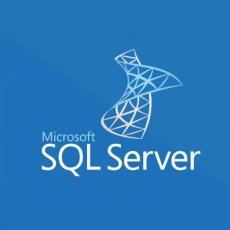 SQLSvrStdCore 2019 SNGL OLP 2Lic NL CoreLic Qlfd