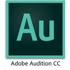 ADB Audition CC MP EU EN ENTER LIC SUB RNW 1 User Lvl 12 10-49 Month (VIP 3Y)